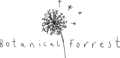 Botanical Forrest - Handmade Soy Candles, Wax Melts